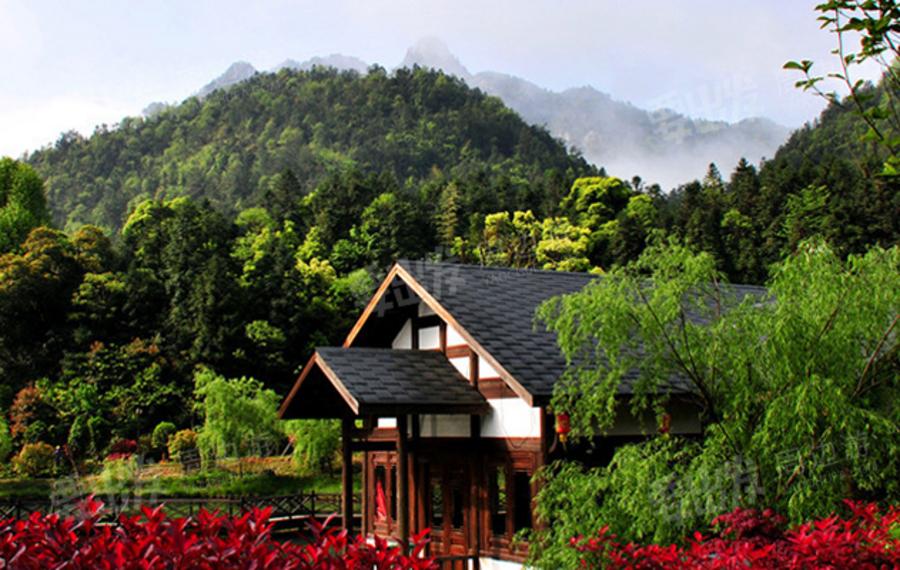 三清山画家村度假酒店