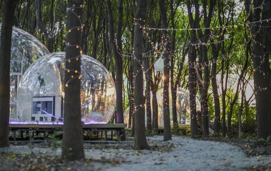 科幻森林营地