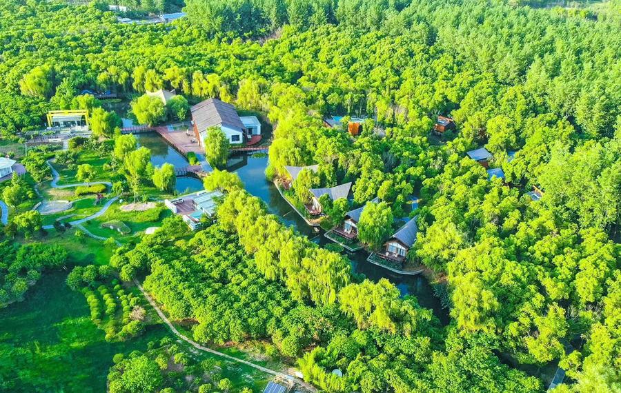 森林里野奢温泉度假酒店
