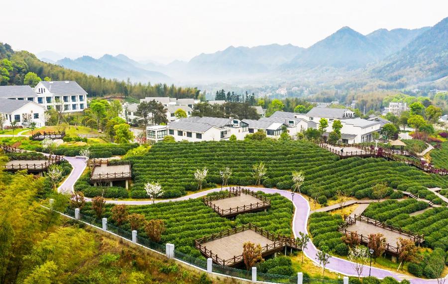 龙游广和雷迪森怿曼龙山运动小镇酒店