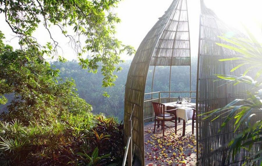 巴厘岛库普库普巴龙丛林度假酒店