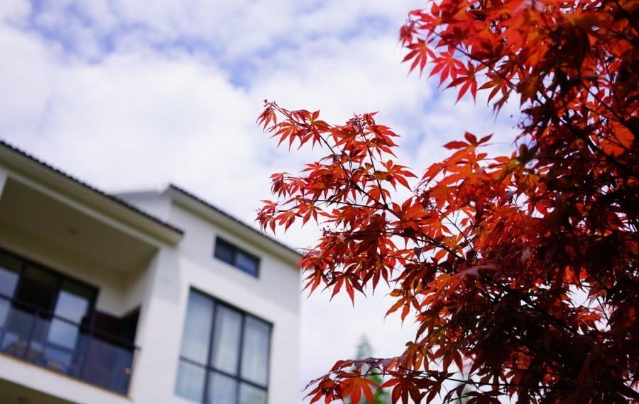 莫干山柒竹精品民宿