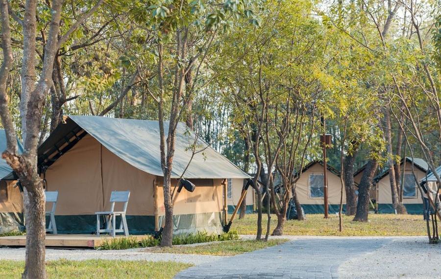 广州北纬23°8森林营地
