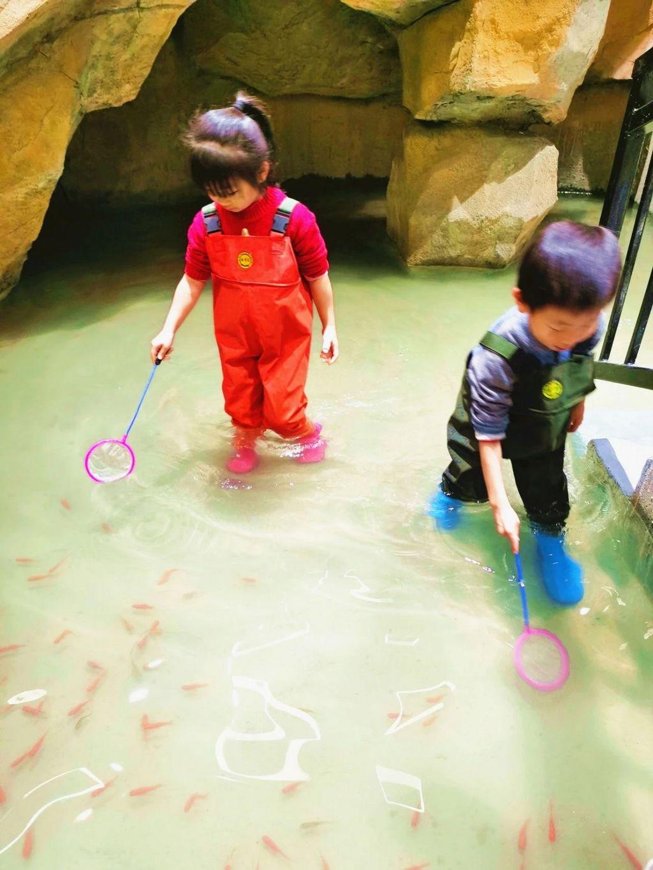 【宝安·大仟里】华南首家室内动物乐园!109元享茱莉动物乐园双人票,还有卡丁车、攀岩、滑索一站畅玩!
